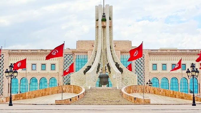 The fall of the government in Tunisia: Arab politics in the same vein