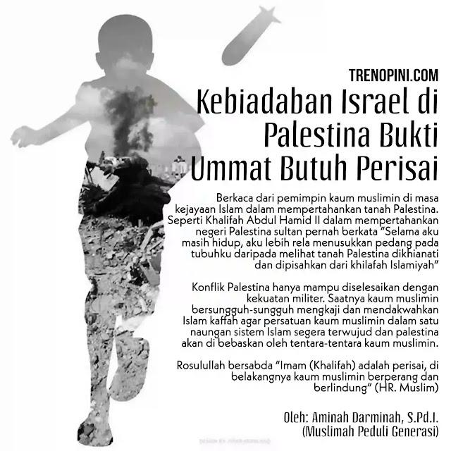 Kebiadaban Israel di Palestina Bukti Ummat Butuh Perisai