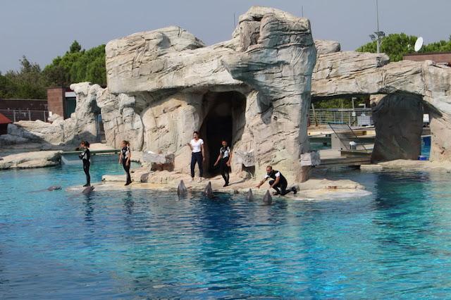 laguna dei delfini a oltremare