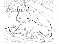 Four Baby Rabbit Coloring Pages Printable