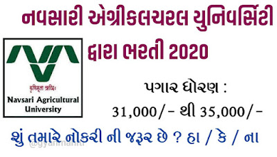 Navsari Agricultural University (NAU) Recruitment