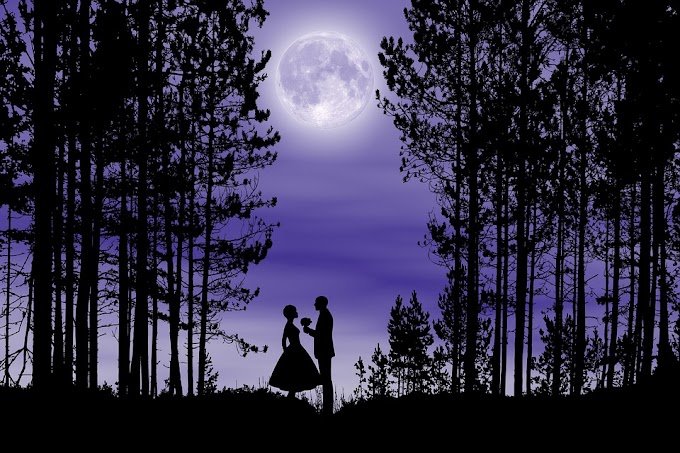 Los sueños: pesadilla nocturna