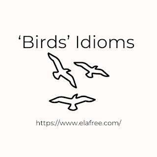 'Birds' Idioms