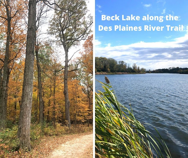 Hiking Off of the Des Plaines River Trail to Beck Lake Enjoying Fantastic Birding