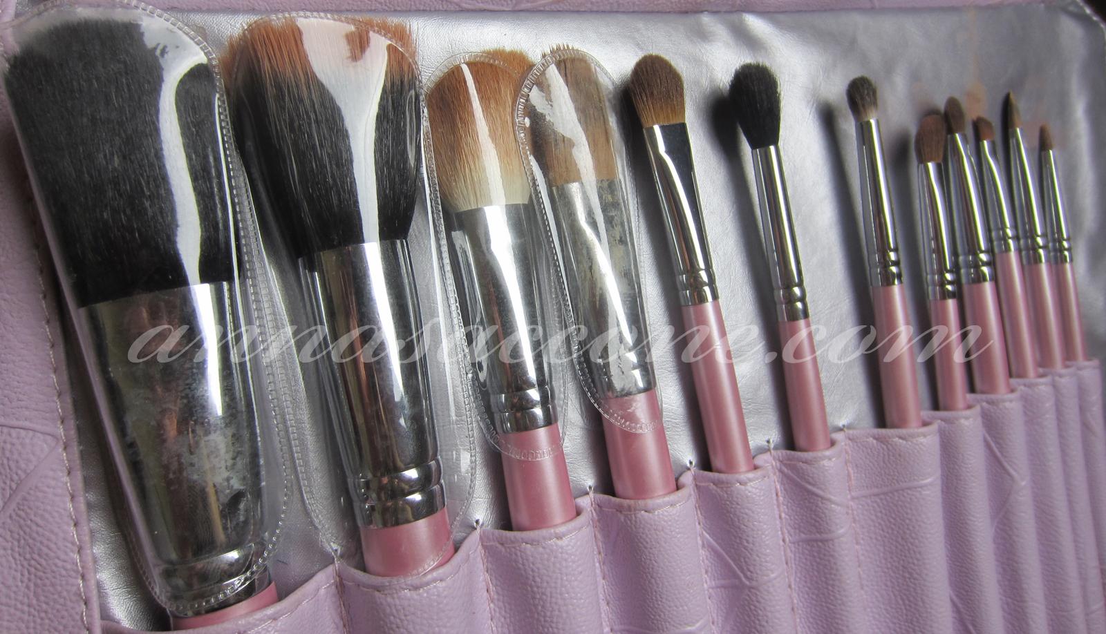 Sedona Lace 12 Piece Professional Pink Brush Set