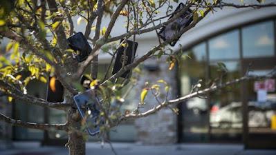 Móviles colgando de árbol