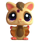 Littlest Pet Shop Tubes Sugar Glider (#2273) Pet