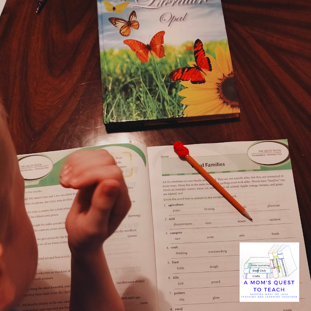A Mom's Quest to Teach: On the Homeschooling Journey During the Summer - Finding the Right Materials Mosdos Literature Opal workbook and textbook