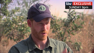 ABC news to air Harry and Meghan an African Journey