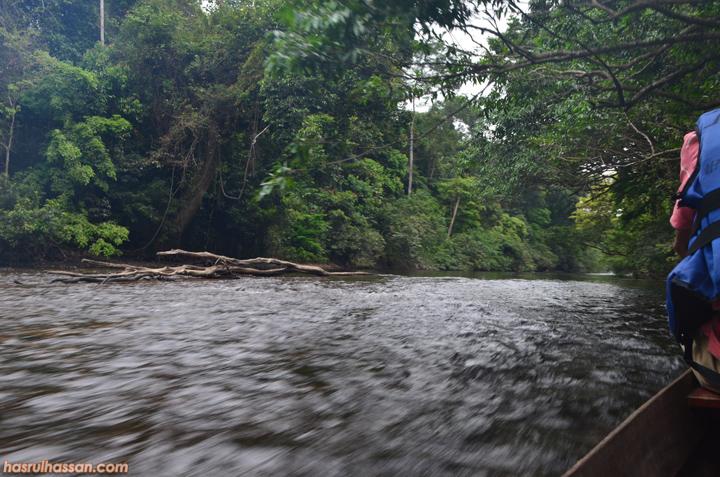 Lubuk Ikan Kelah Sungai Tahan