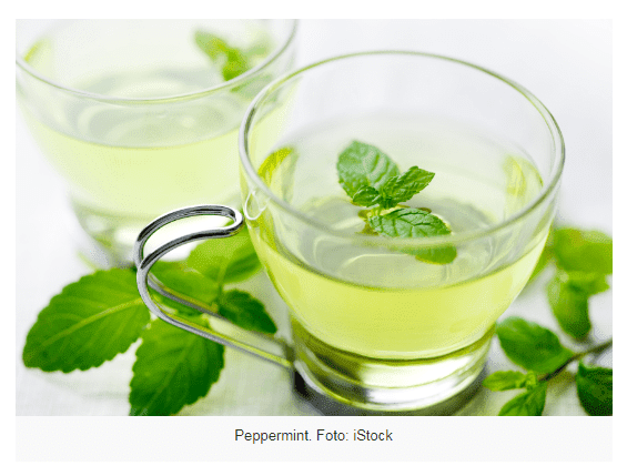 cara menghitung berat badan dengan teh hijau