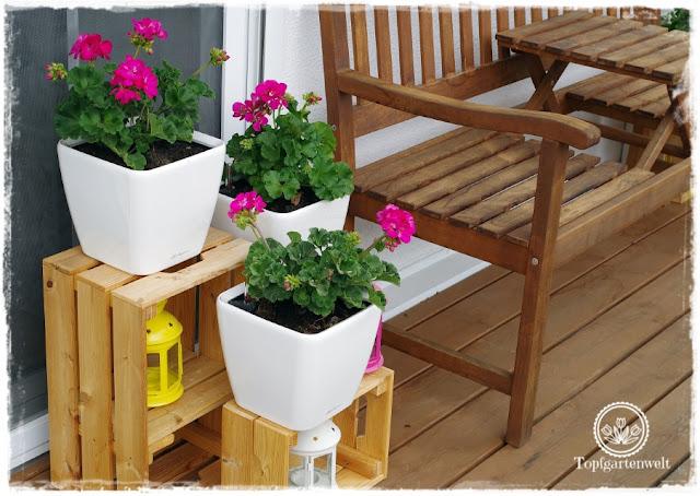 Gartenblog Topfgartenwelt Buchtipp Senkrecht Gärtnern - Garten DIYs - Kistenarrangement für Töpfe