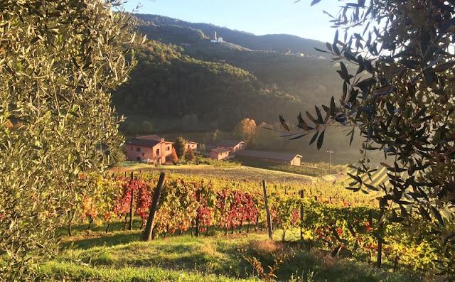 Vinícola Greo Winery