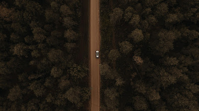 Drone Aerial Shot, Forest, Trees, Car, Road