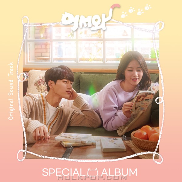 Various Artists – Meow, The Secret Boy Special OST