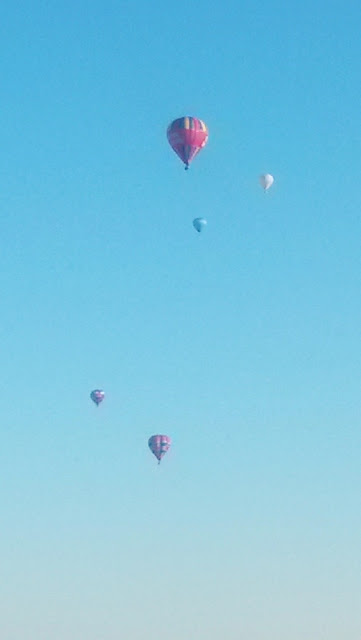 Five hot air balloons in sky