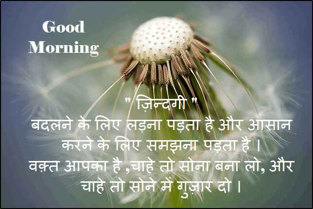 Good Morning SMS, Quotes