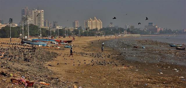 Картинки по запросу самые грязные пляжи мира