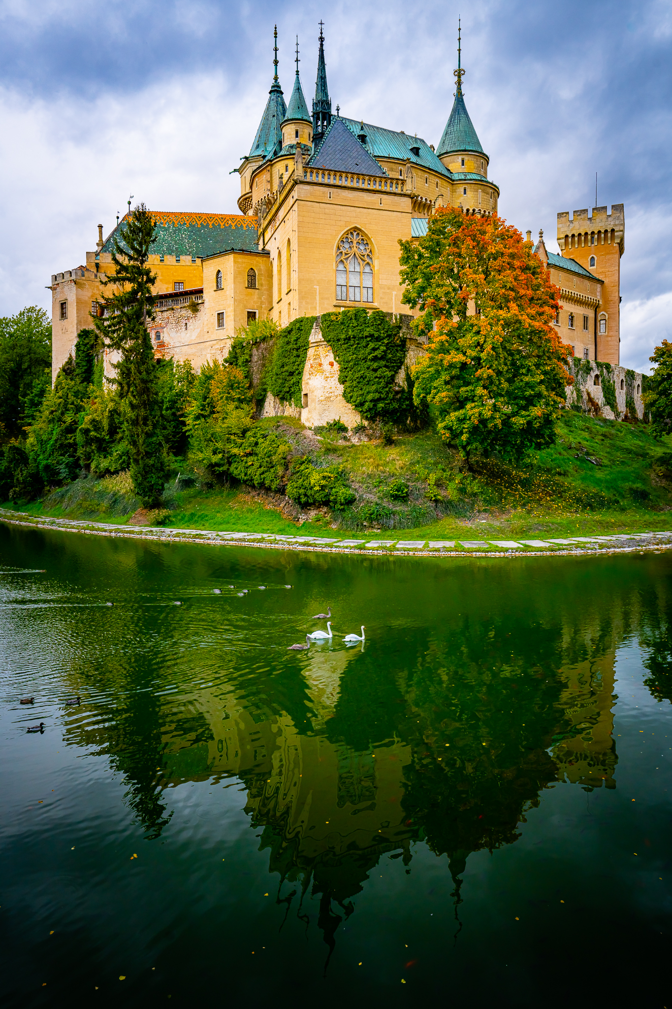 a photo of white swans in the moat at bojnice castle slovakia