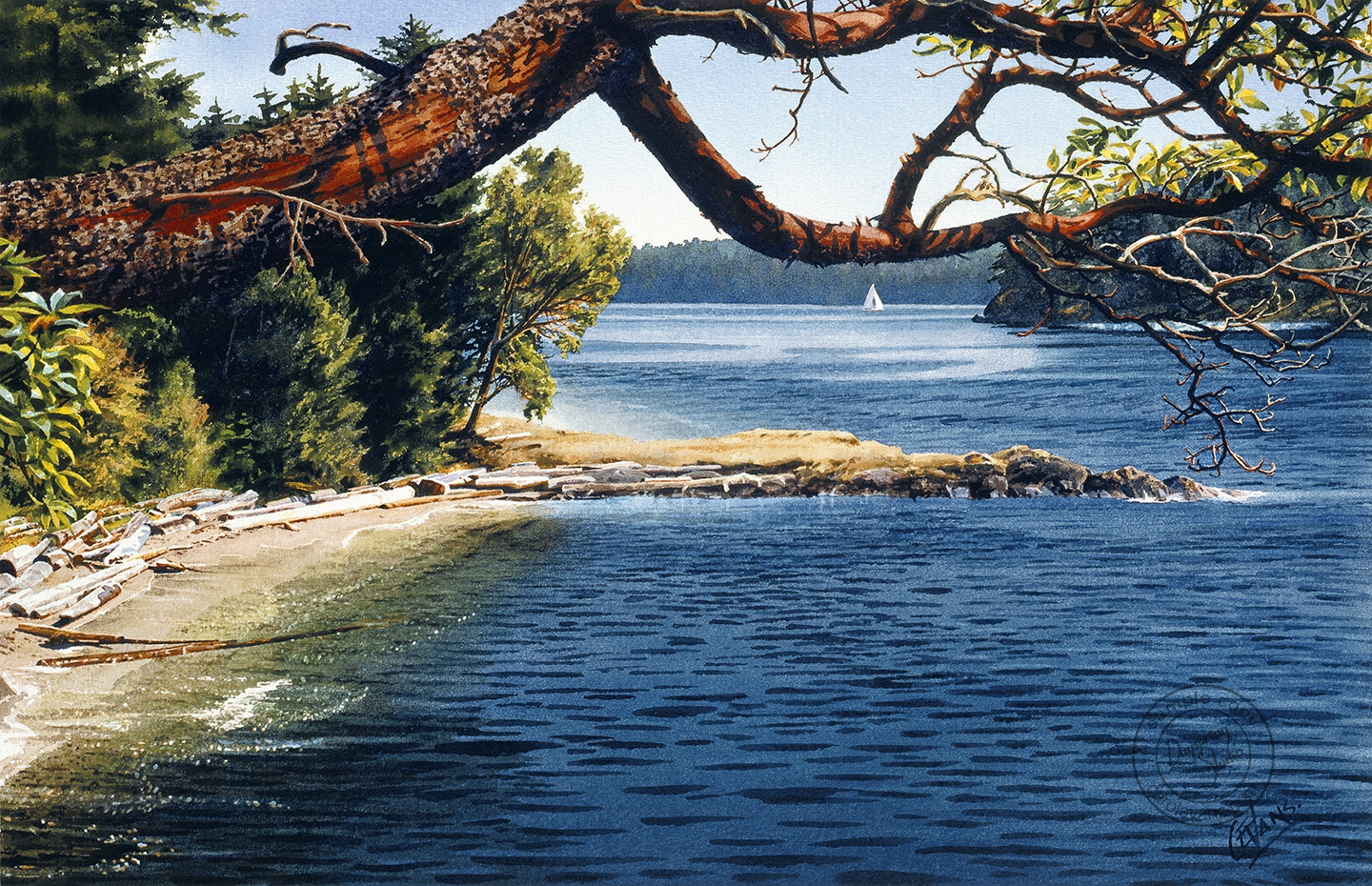 13-View-through-Arbutus-Carol-Evans-Watercolour-Paintings-of-Water-with-Reflections-and-Transparency-www-designstack-co