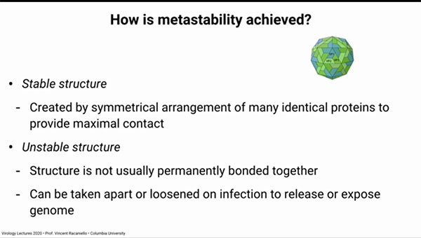 Metastability is achieved by symmetrical use of ionic bonding of subunits  (Source: Vincent Racaniello, Columbia, U.)