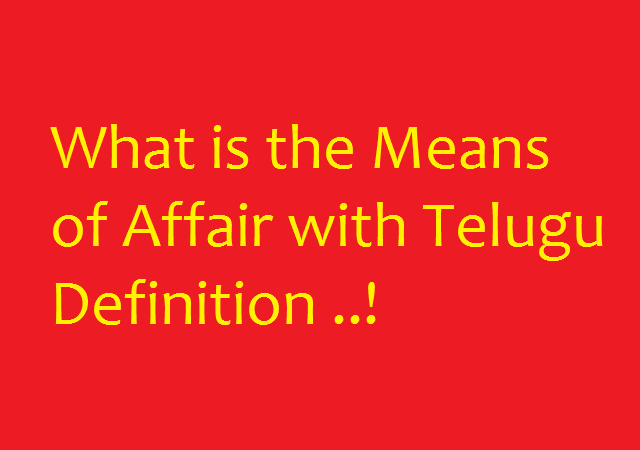 What is the Means of Affair with Telugu Definition