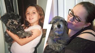 Υιοθέτησε μια σκυλίτσα επειδή της θύμιζε το κουτάβι που έχασε μικρή. Τελικά ήταν το ίδιο σκυλί!