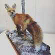 Red fox with custom base