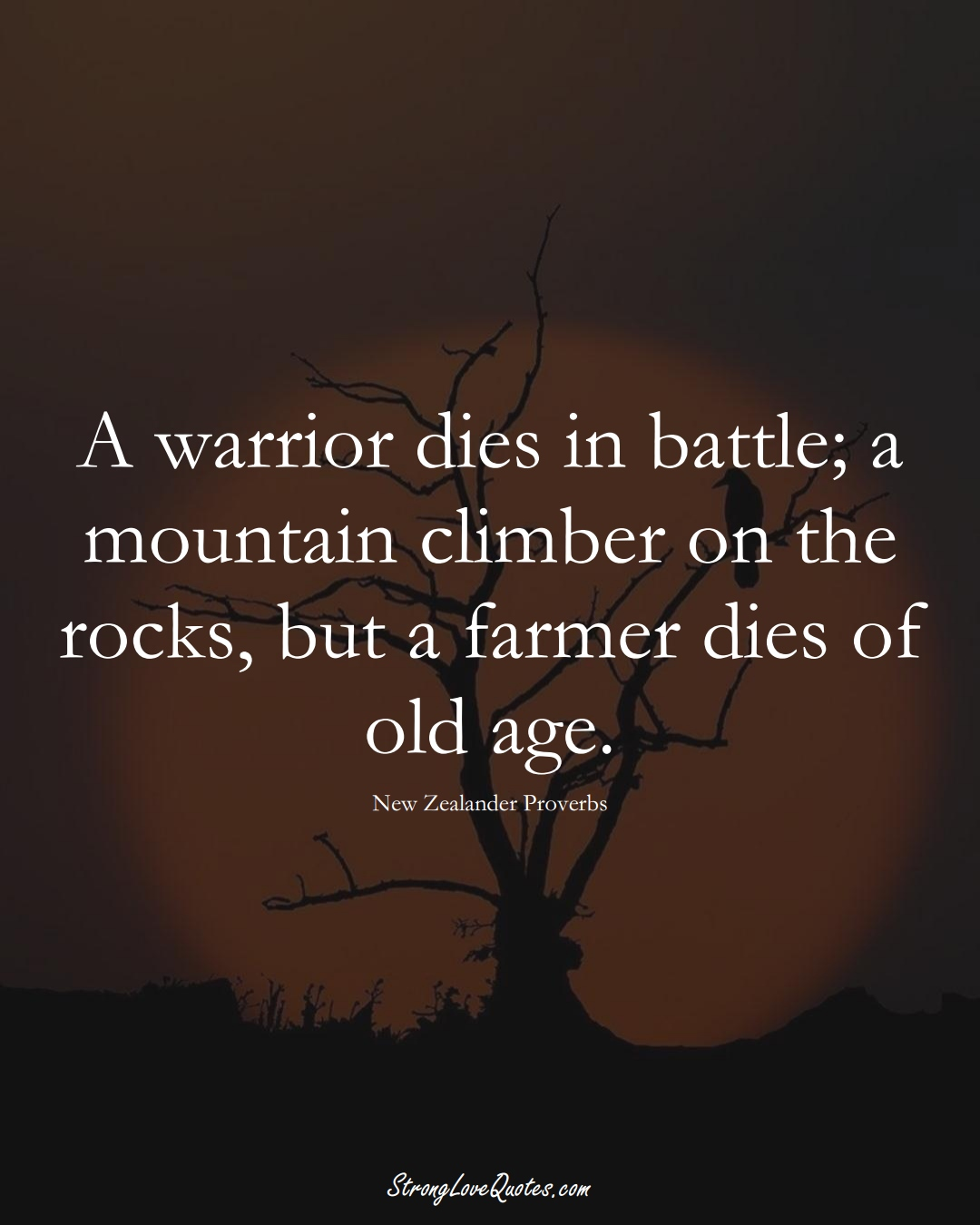 A warrior dies in battle; a mountain climber on the rocks, but a farmer dies of old age. (New Zealander Sayings);  #AustralianSayings