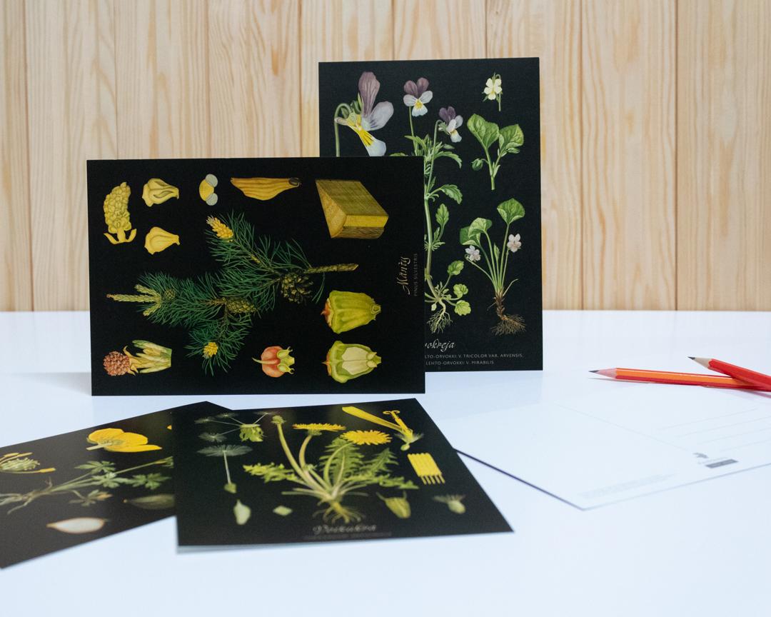 postikortit muokattu ja valmis kuva