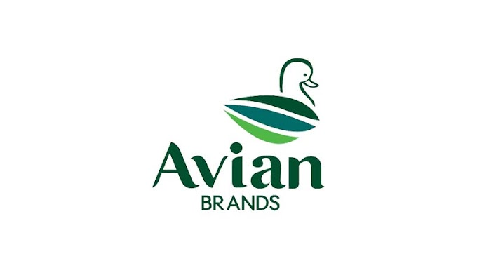 Info Lowongan Kerja PT Avia Avian