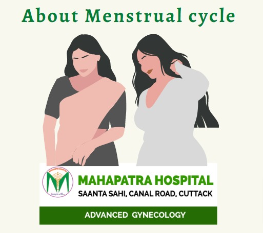 About Menstrual cycle