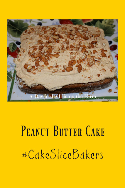 Peanut Butter Snack Cake pin