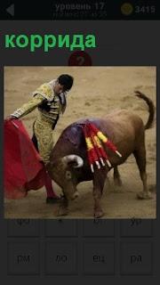 Матадор и бык на корриде, несколько коротких стрел он уже вонзил в быка