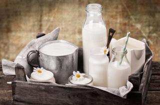 Cow-milk-vs-buffalo-milk