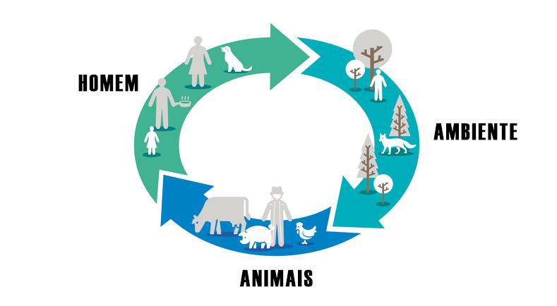Zoonose | Doenças de Animais Transmissíveis ao Homem