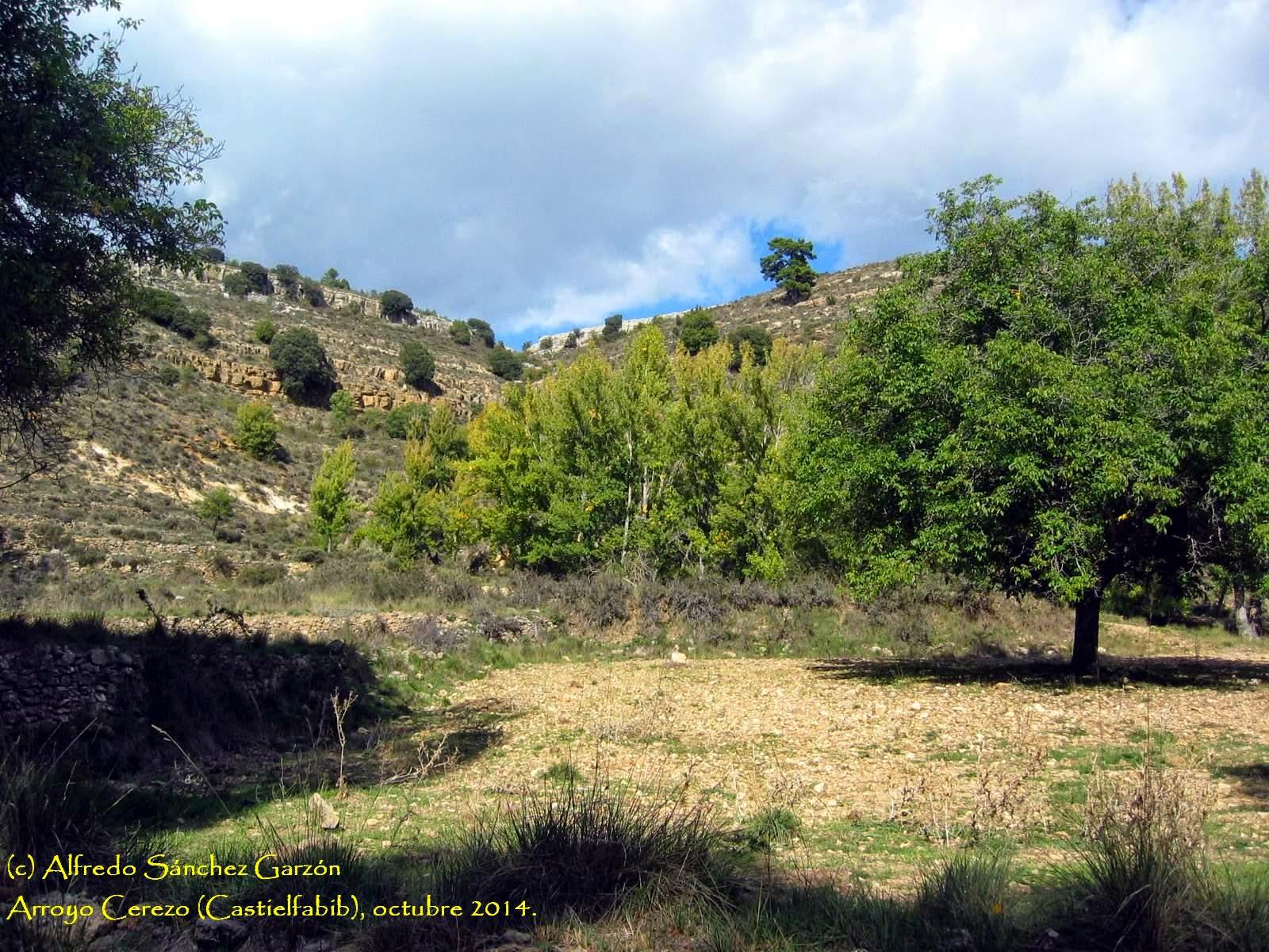 castielfabib-arroyo-cerezo-campos
