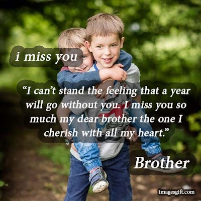 long-distance miss you status for brother