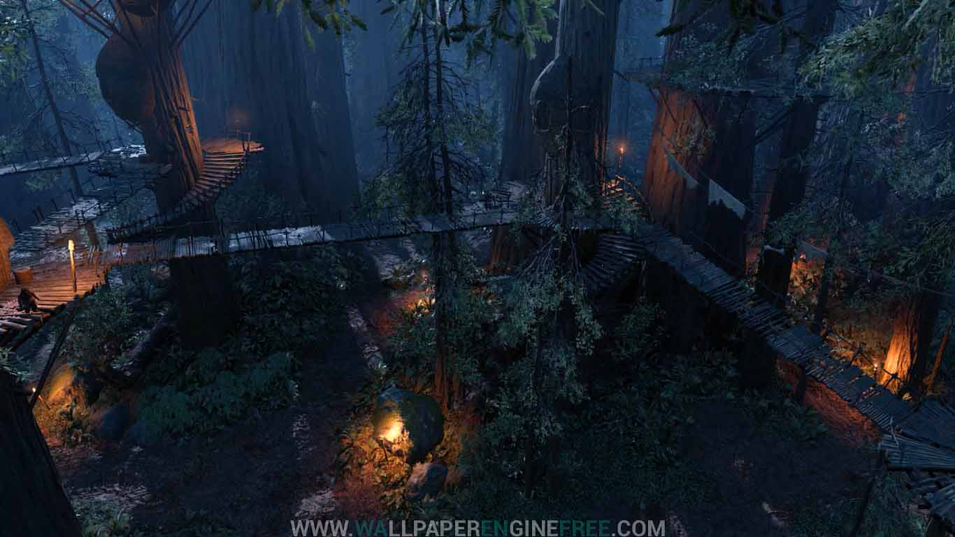 Download Star Wars Battlefront Endor Ewok Village Night Forrest Wallpaper  Engine Free
