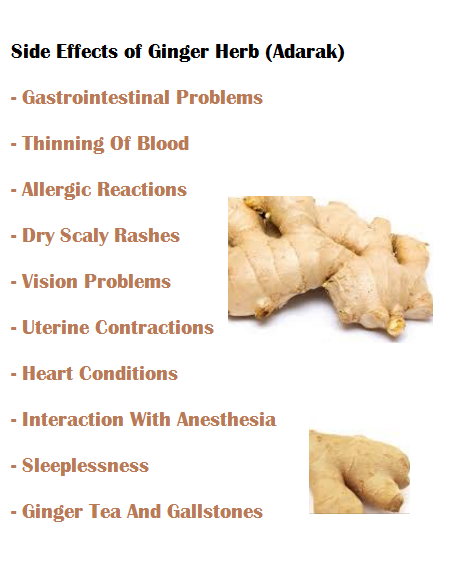Side Effects of Ginger Herb (Adarak)