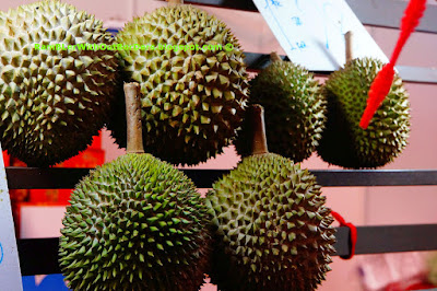 Durians on rack