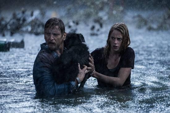 Sinopsis dan Review Film Crawl