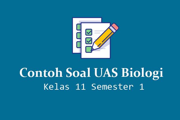Contoh Soal UAS Biologi Kelas 11 Semester 1 Kurikulum 2013