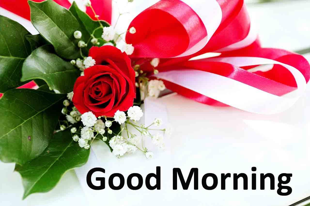 Good Morning Images Free Download 2019 Beautiful Good Morning Quotes Pictures Photos Images Beautiful Good Morning Quotes Pictures