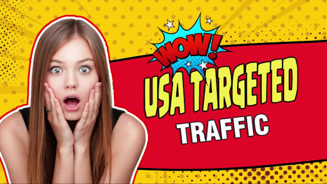 Drive niche targeted USA web traffic, real organic visitors - increase page rank - improve alexa ranking quickly
