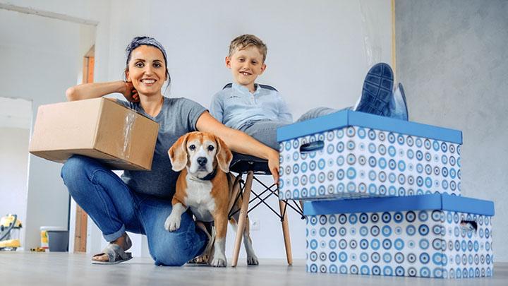 moving toy dog