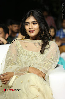 Tollywood Actress Hebah Patel Pos in Lehenga Choli at Nanna Nenu Na Boyfriends Audio Launch  0024.JPG