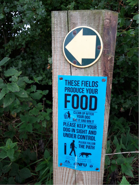 A wooden post in a hedgerow with a blue sign nailed to it asking walkers to control their dogs
