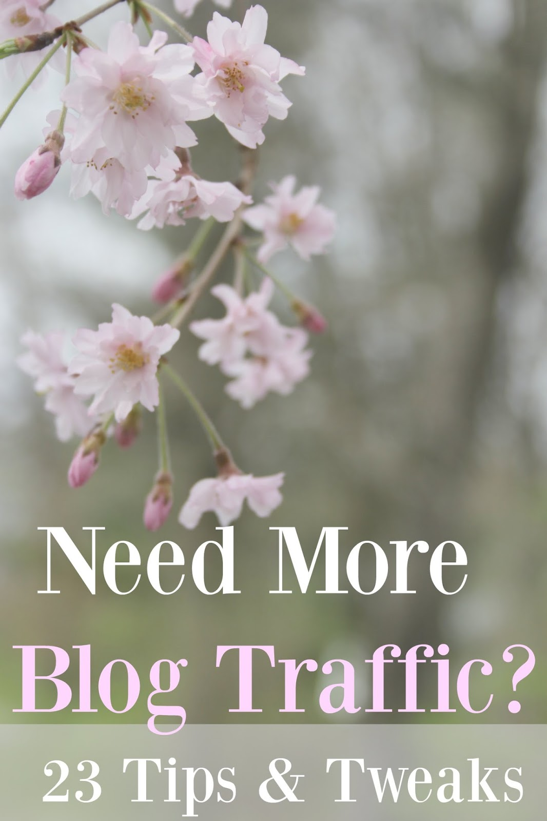 Need more blog traffic tips and tweaks by Hello Lovely Studio