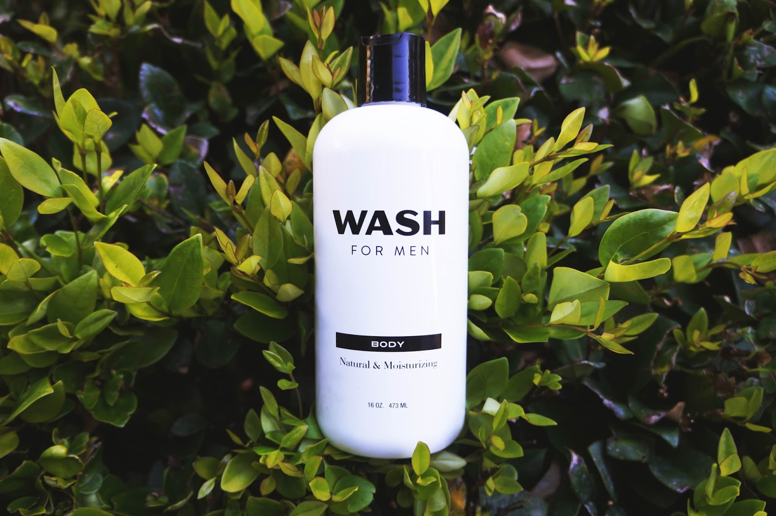 wash for men body wash